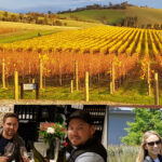 small group wine tour yarra valley